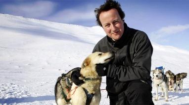 David_Cameron_WWF_800
